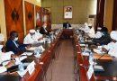 Tchad: «La santé par la salubrité», un nouveau concept de lutter contre le palu
